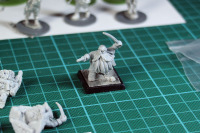 Freebooters Fate Zwerge