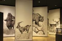 MUPAC - Museo de Prehistoria y Arqueología de Cantabria