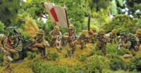 Bolt Action - Second Edition