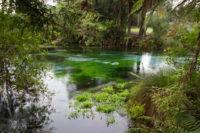 New Zealand - Hamurana Springs