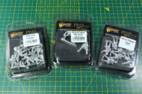 Warlord Games - Pike & Shotte Wars of Religion