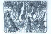 Warhammer Age of Sigmar - Awakened Wyldwood