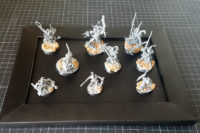 Warhammer Age of Sigmar - Warcry Untamed Beasts