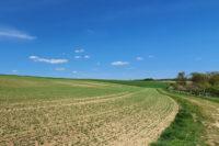 Holler, Westerwald