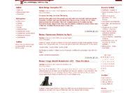 2008 Portal Snapshot
